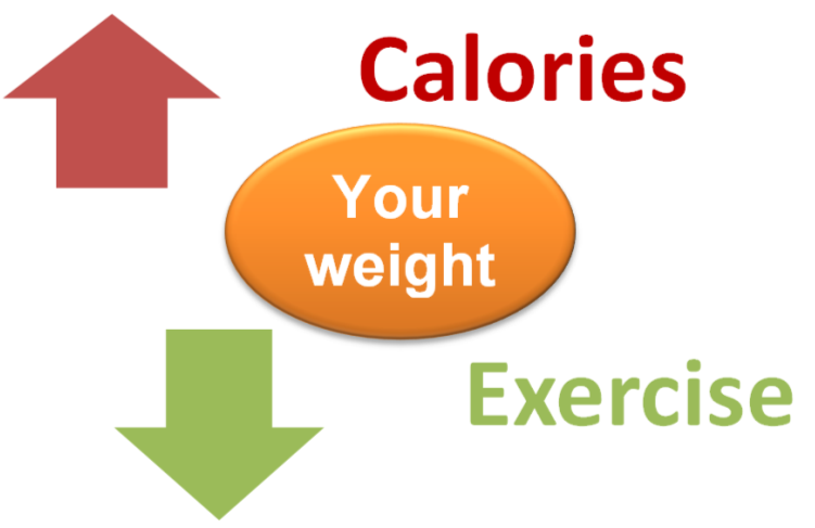 The relationship between calories, exercise and diet