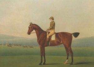 Mr Walsh's Perdita, with jockey up, on Nantwich Racecourse