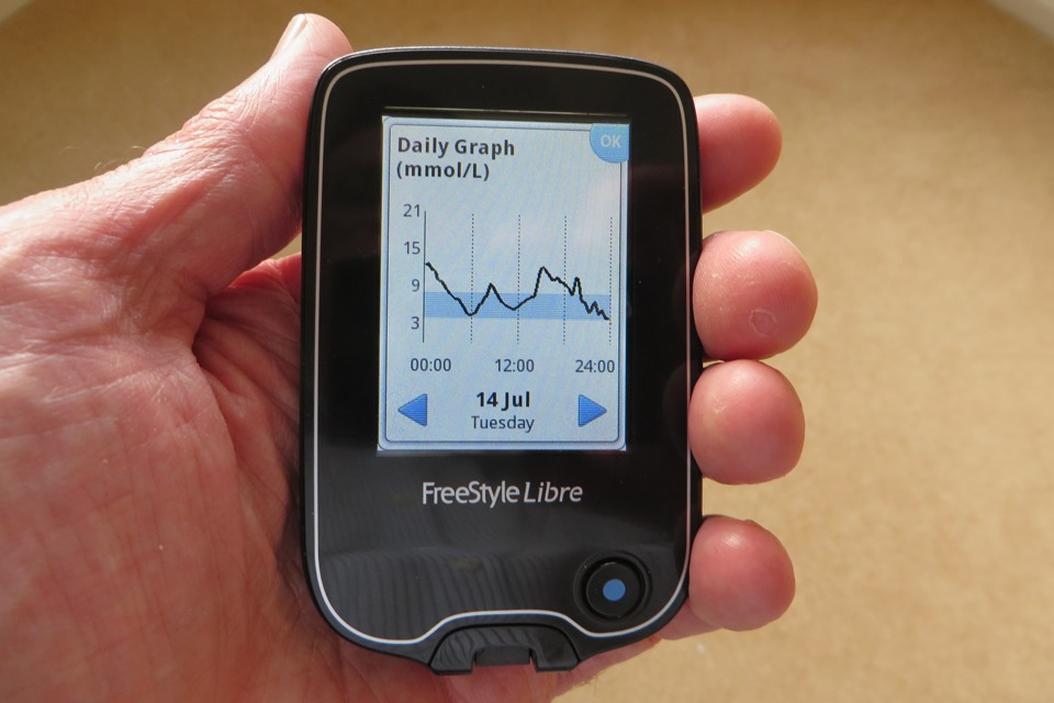 Daily graph of glucose levels from Freestyle Libre sensor